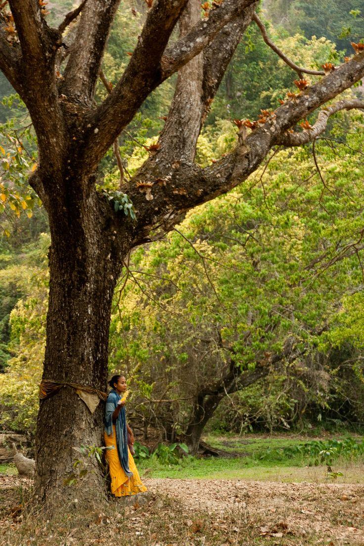Chiang Mai , Thailand  Photography Diego Morodo