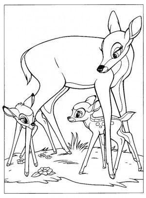 Disney Animal Coloring Book : 45 best images about bambi coloring book on pinterest coloring
