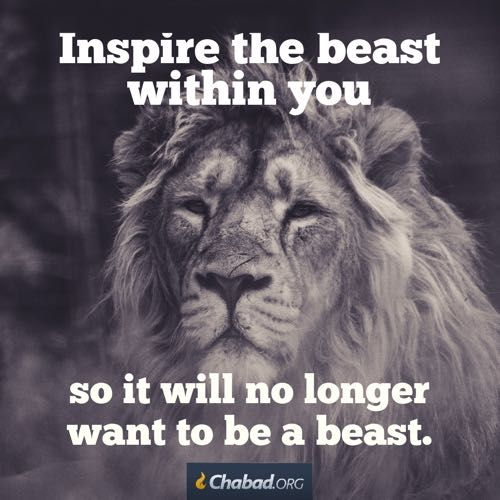 """Inspire the beast, so it will no longer want to be a beast"". Happy Sunday all, have a great one🙏🏼🙏🏼🙏🏼😘💜💜💙#HappySunday #inspirationalquotes #Betheyourbest #truetalk #instagood #inspirational #chabad"