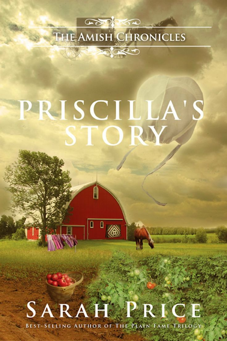 Priscillas Story The Tomato Patch Novel Amish Chronicles By Sarah Price