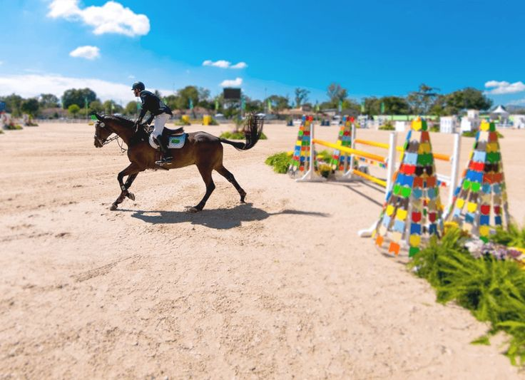 Built for the 2007 Pan American Games, the Olympic Equestrian Centre was modernised and expanded for the Rio 2016 Games. The million square metre area contains the jumping and eventing arena, cross-country course and horse and trainer accommodations.