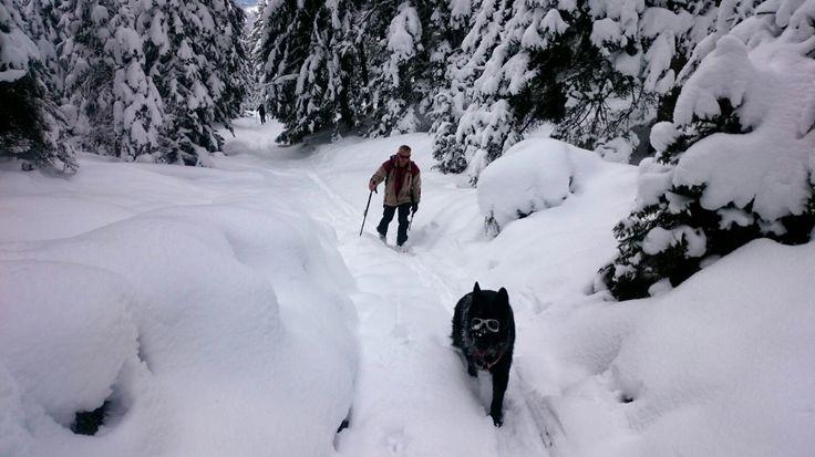 Erste schitour 2017 Winter-Wonder-Land