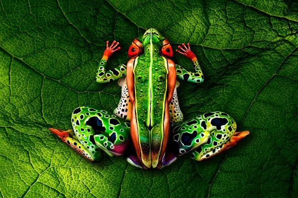 Johannes Stotter The following frog body art was created using 5 people This Body Painting Will Make You Blown Away