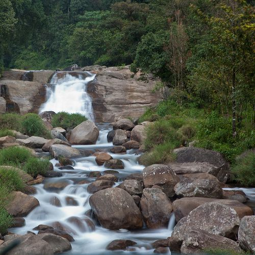 Coimbatore Attractions: 36 Best Valparai Resorts Images On Pinterest