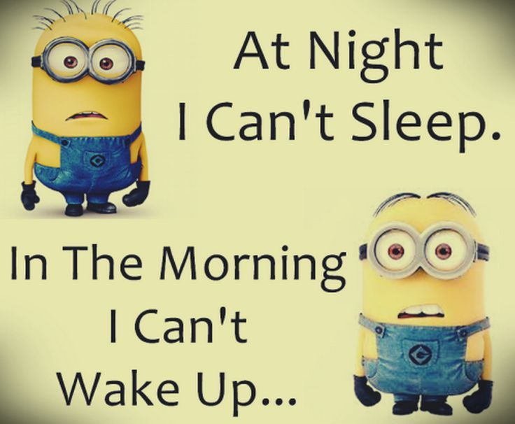 Top 40 Minion Jokes | Quotes and Humor
