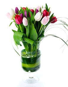 Singapore Flowers: Flower Vase - Twenty Tulips!