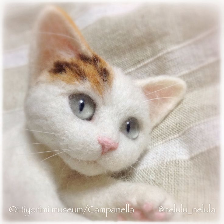 Precious little face on this needle felted kitten by Campanella from Japan