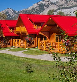 Pocahontas Cabins are truly a hidden gem in Jasper National Park. Perfect for secluded getaway or family vacation. Call direct for our best rates.