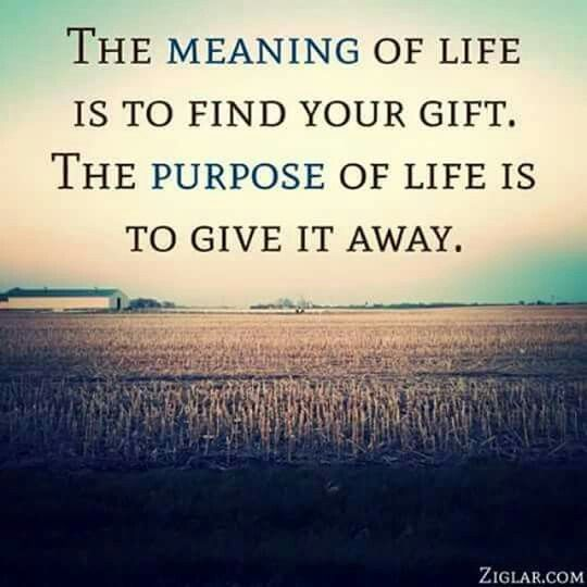 Quotes About The Purpose Of Life Impressive Best 25 Purpose Of Life Quotes Ideas On Pinterest  Emerson