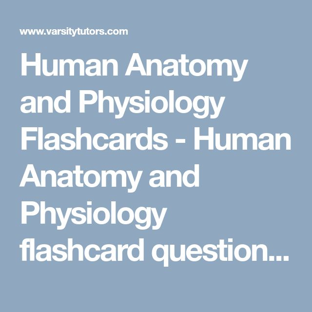 7 best moms treatments images on pinterest medical pleural human anatomy and physiology flashcards human anatomy and physiology flashcard questions with full solutions fandeluxe Images