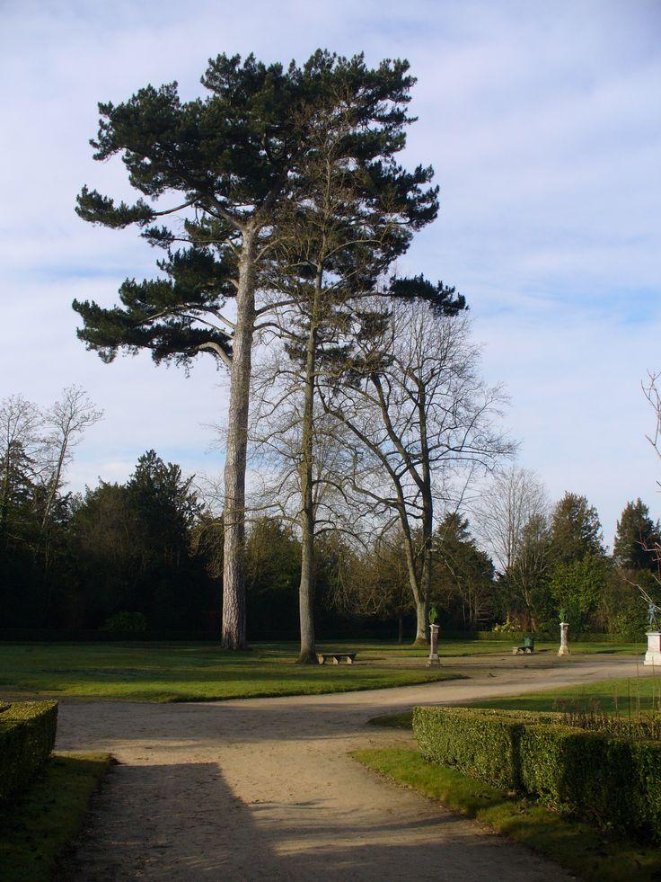 Versailles, Bosquet de la Reine