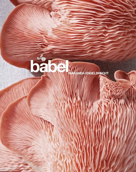 VISI / Competitions / Win a Babel Cookbook