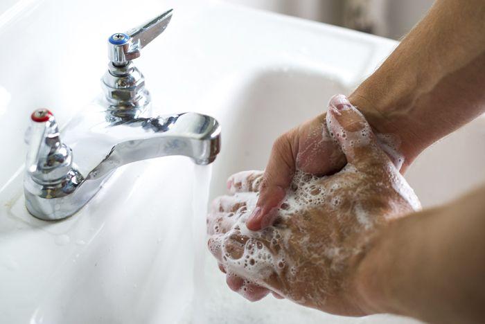Hábitos saludables Recomiendan lavarse las manos cada vez que acabe de jugar con su perro o tenga contacto con él/a. Lavarse las manos con agua y jabón. – Lávese las manos con agua corriente y jabón después del contacto con la saliva del perro o heces de perro. Asegúrese de …