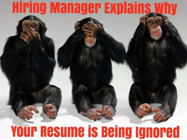 151 best resume cover letter tips images on pinterest career