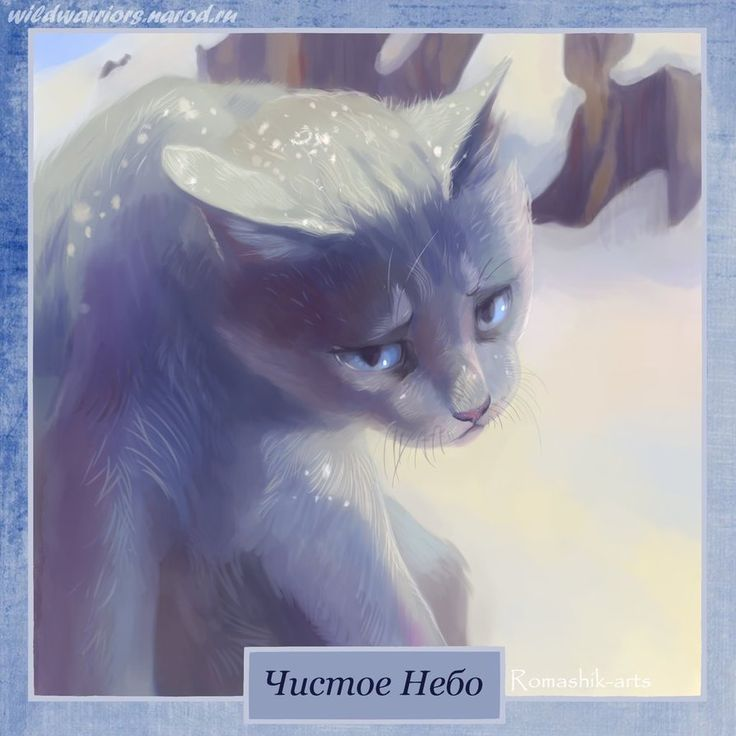 Картинки коты воители с именем