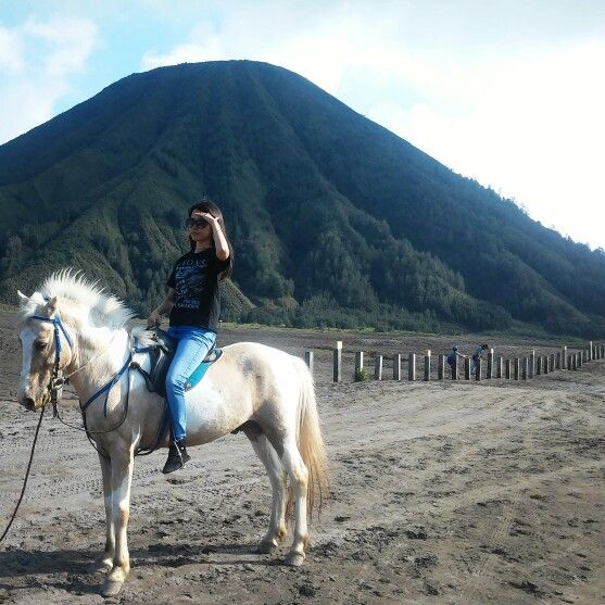 Bromo Mountain - Indonesia