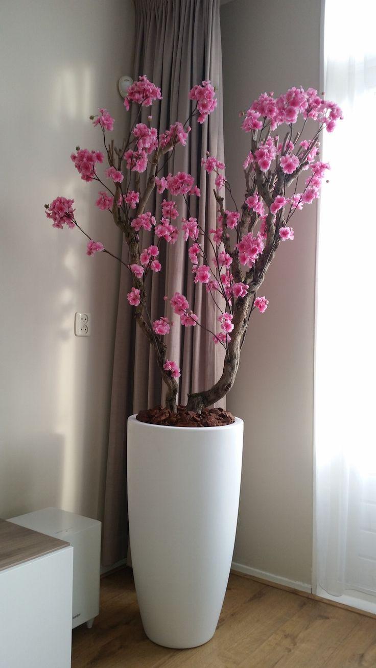 Prachtige roze bloesemboom in de maat XL. Deze bloesemboom is ook verkrijgbaar in andere kleuren, maten en bloempot versieringen. Inclusief pot.