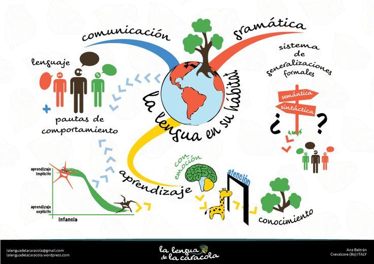 La lengua en su hábitat   Mapas conceptuales   Spanish lessons, Map, Spanish