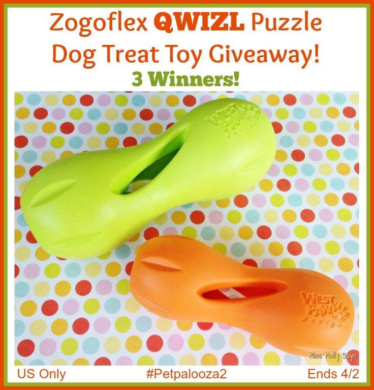 Looking for a cute dog toy? Enter to win a Zogoflex QWIZL Puzzle Dog Treat toy here! 3 Winners!