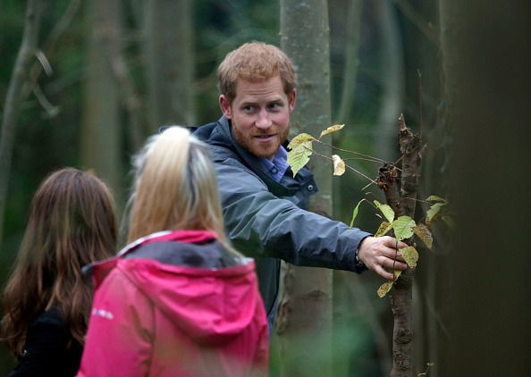 Prince Harry made a visit to Myplace at Brockholes Nature Reserve on October 23, 207. Myplace hopes to empower young people by encouraging action in environmental activity to improve areas for wildlife, communities and their own well being.