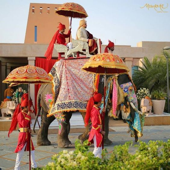 Baraat entry ideas that are trending AF | Groom entering on elephant | Royal Indian weddings | Desi baraat | Groom's entry ideas | Real Indian weddings | Big Fat Indian Weddings | Desi Dulha | Picture Credits: Momente Wedding Planner | Every Indian bride's Fav. Wedding E-magazine to read. Here for any marriage advice you need | www.wittyvows.com shares things no one tells brides, covers real weddings, ideas, inspirations, design trends and the right vendors, candid photographers etc.