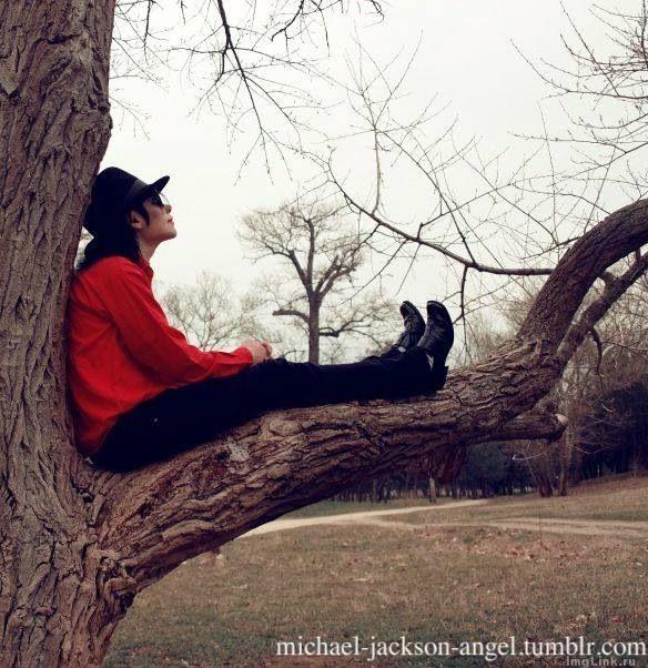 Michael Jackson ❤ funny. I like it.                                                                                                                                                                                 More