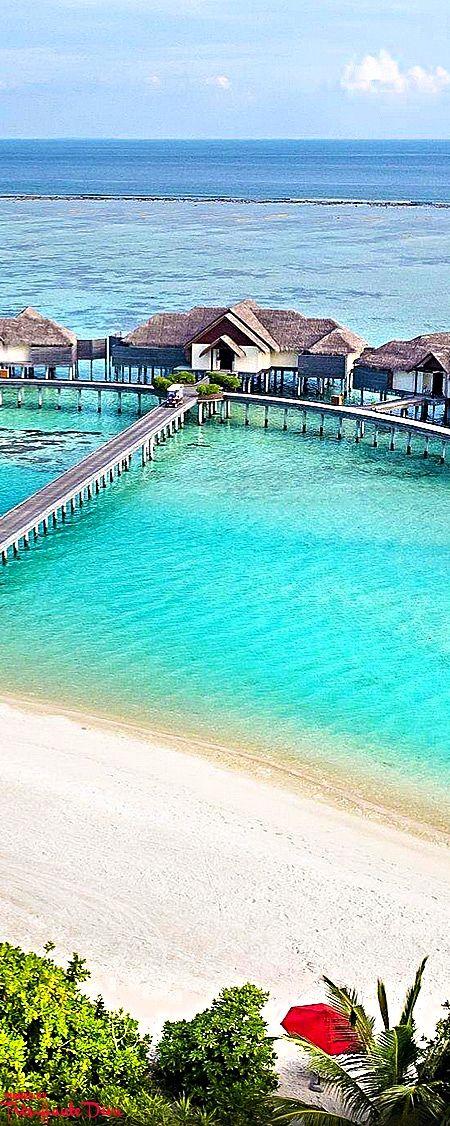 Sparkling sand + natural beauty meet world class accomodations ~ Per Aquum Niyama in the Maldives