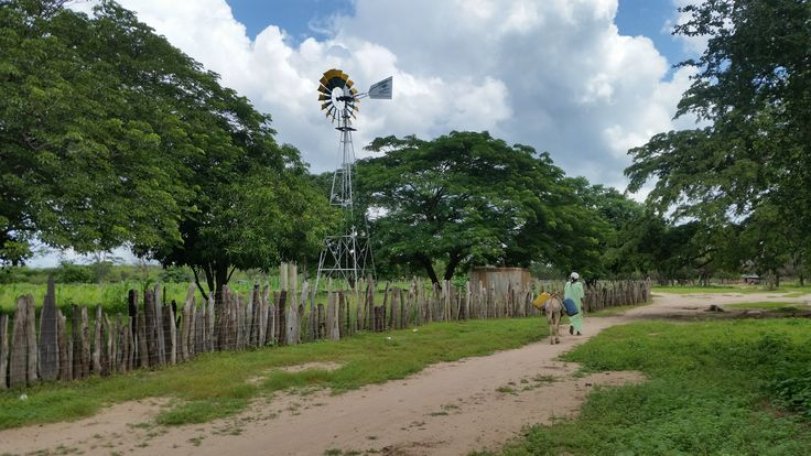 www.aurorawayuu.com  aurorawayuu☀️ STYLE WITH MEANING ❤️     http://www.aurorawayuu.com/ #indigenous #people #life #purse #style #meaning #help #instagram #amor #love #colombia #colombiana #colombiano #bolso #ayudar #foundation #money #food #light #water #energy #mujer #woman #indigena #comida #agua #energia #luz
