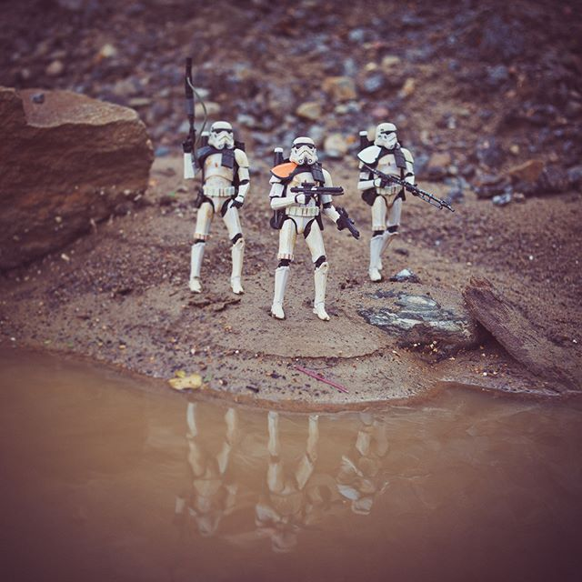 Took the trio for a walk, found an oasis in the desert🌴  #sandtrooper…