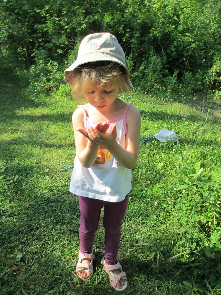 Butterfly Catching at Lucien Lake #lucienlake #butterflies #catchingbutterflies #summerfun #adventure