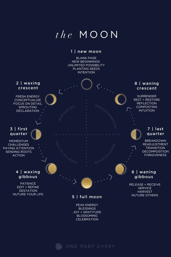 The Moon Part 1 Manual Guide