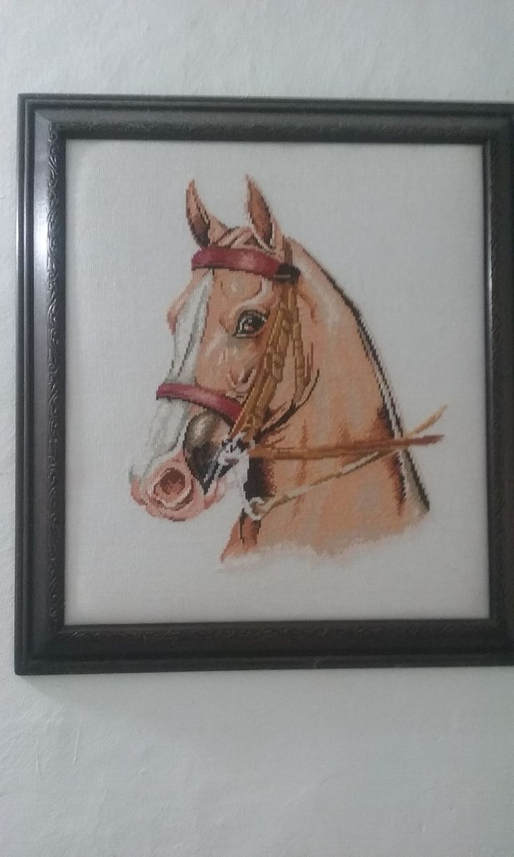 caballo punto de cruz