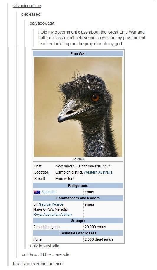 The truth about the emu war of '32.