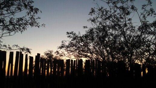 Sunset in Dinokeng (khayalama Dube Game Logde)