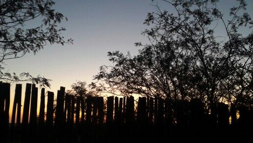 Sunset in Dinokeng (khayalama Dube Game Logde)