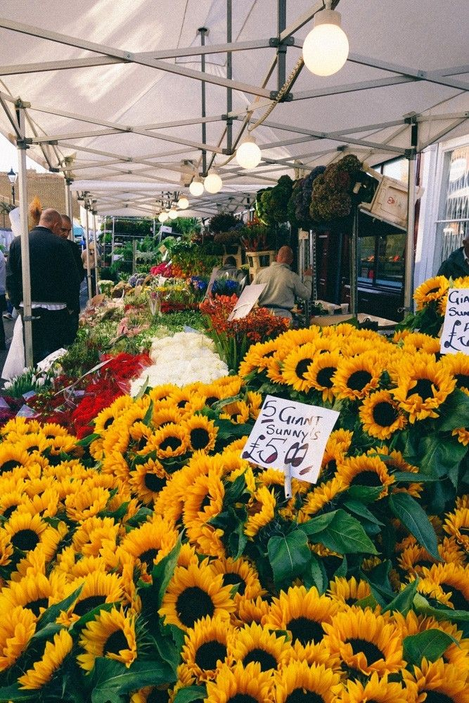 Columbia Road Flower Market In 2020