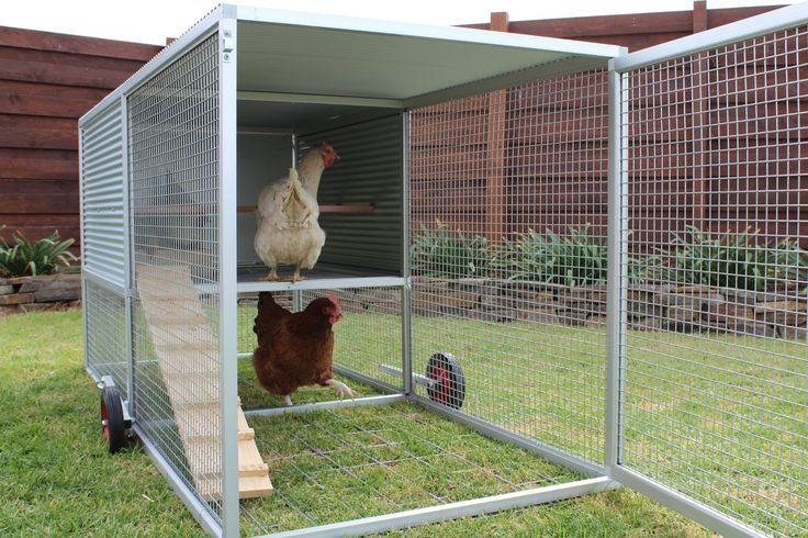 Now available on Amazon.com! - Royal Rooster Chicken Castle Deluxe Chicken Tractor with Run & Wheels