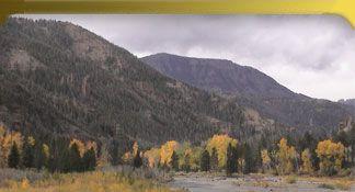 Cody WY Hotels, Yellowstone Lodging Cabins