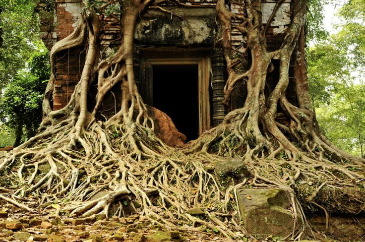 Amazing Some Images Of Koh Ker The 10th Century Capital Of Cambodia and Koh Ker In Cambodia | Goventures.org
