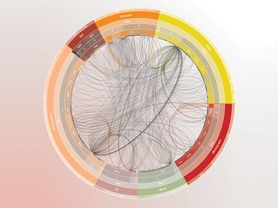 VisualComplexity.com uno spazio unificato risorsa per chiunque sia interessato nella visualizzazione delle reti complesse. L'obiettivo principale del progetto è quella di sfruttare una comprensione critica dei diversi metodi di visualizzazione, attraverso una serie di discipline, diversi come biologia, reti sociali o il World Wide Web..