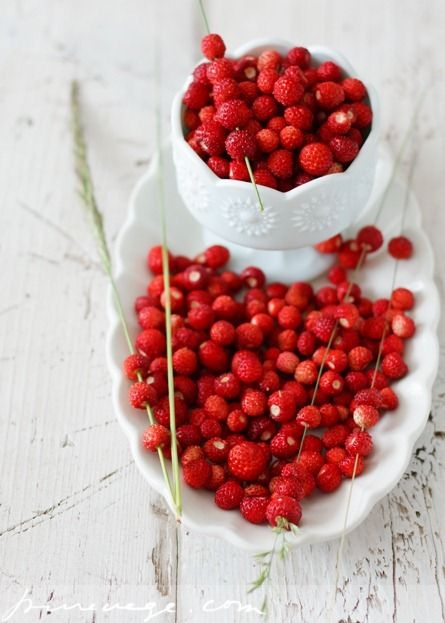 Wild strawberries ♥ My All time favorite!  As a child I used to pick them in the mountain-forests in Süd Tirol (Italy) while taking long and beautiful hikes with my family (my dad used to wonder why my mom and I were so slow to finish the hike... he always looked passed the berries and we were stuffed full)