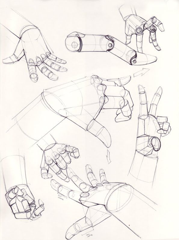 Hands. ✤ || CHARACTER DESIGN REFERENCES | Find more at https://www.facebook.com/CharacterDesignReferences if you're looking for: #line #art #character #design #model #sheet #illustration #expressions #best #concept #animation #drawing #archive #library #reference #anatomy #traditional #draw #development #artist #pose #settei #gestures #how #to #tutorial #conceptart #modelsheet #cartoon #hand