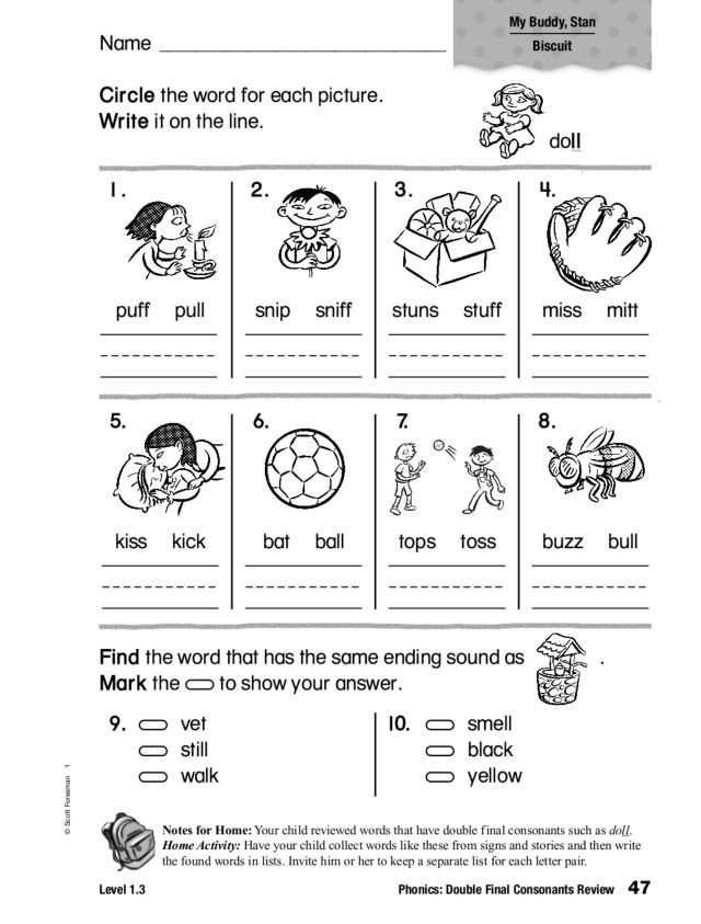 Phonics Double Final Consonants Review Worksheet Lesson
