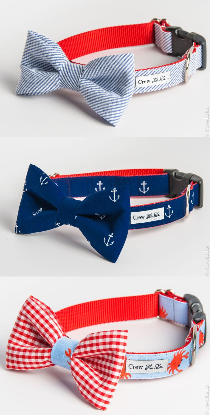 Any Ole Miss pup would look dapper in a red and blue bow tie collar. Very cute!