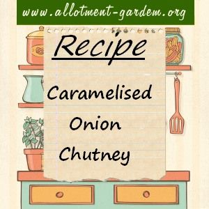 Recipe for Caramelised Onion Chutney. Makes about 3 lbs. This recipe was given to us by a friend who lives in France where she served it with pate on toast