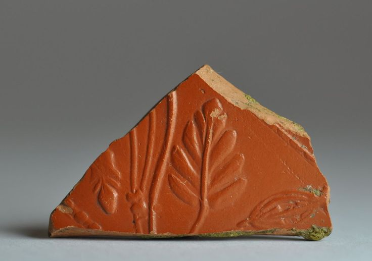 Terra sigillata Samian ware shard, 2nd-3rd century A.D. Decorated with leaf. Private collection