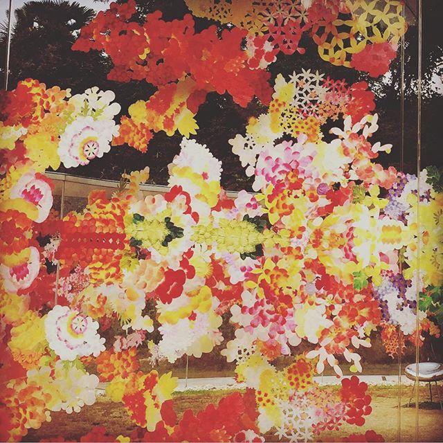 遠目にもとても鮮やかな作品です✨。 #A邸 #リフレクトゥ #荒神明香 #harukakojin #犬島 #inujima #瀬戸内国際芸術祭 #artsetouchi #setouchitriennale2016