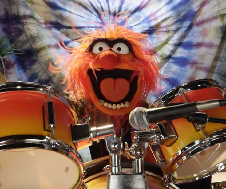 Dr. Teeth and The Electric Mayhem to Play Live at Outside Lands 2016