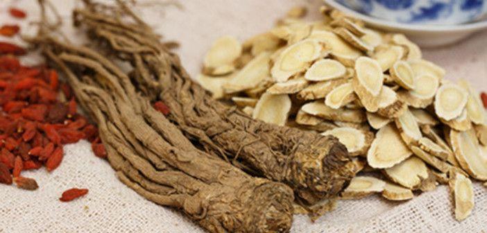 Codonopsis pilosula – ženšen chudých. Pokud máte rádi různé bylinky k podpoře výkonu a zdraví, tak byste určitě měli vyzkoušet pazvonek dangšen.