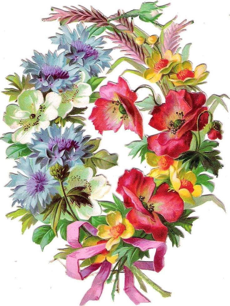 Oblaten Glanzbild scrap diecut chromo Mohn Blumen Kranz XL floral wreath poppy:
